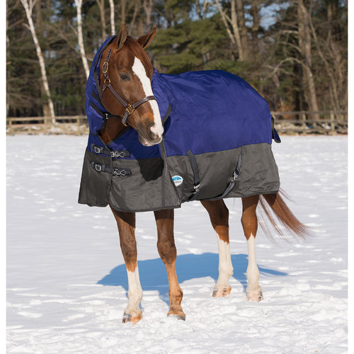 Weatherbeeta Winter Horse Blankets