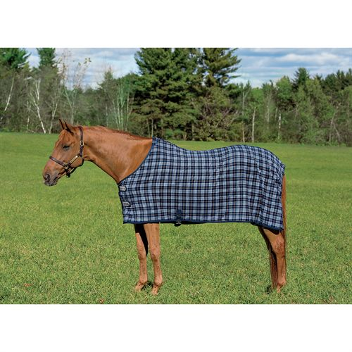 Blue Corn Plaid