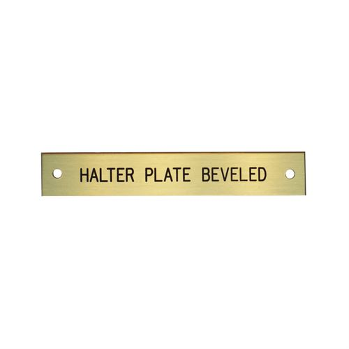 Beveled Halter Plate with 1 or 2 Lines