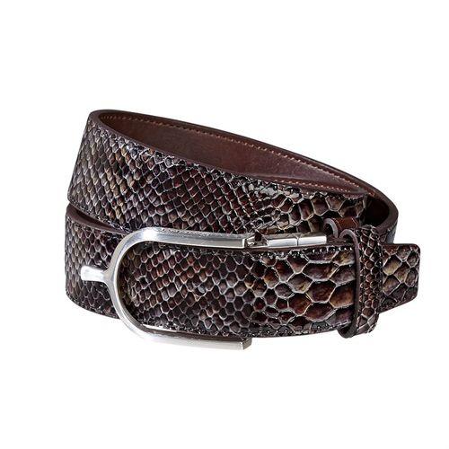 Brown/Snake