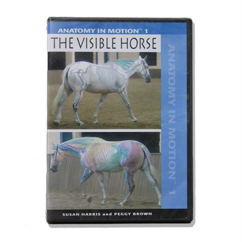 Dvd Visible Horse