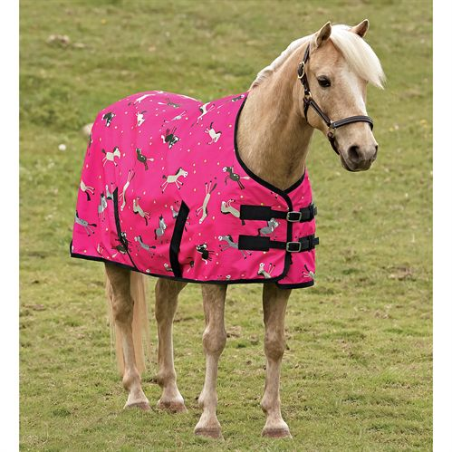 CARTOON PONY TURNOUT BLANKET