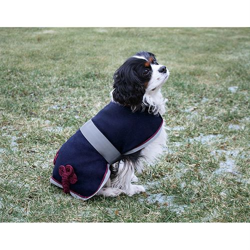 DOVER WOOL DOG DRESS SHEET