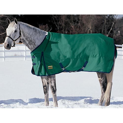 Upland Turnout Blanket